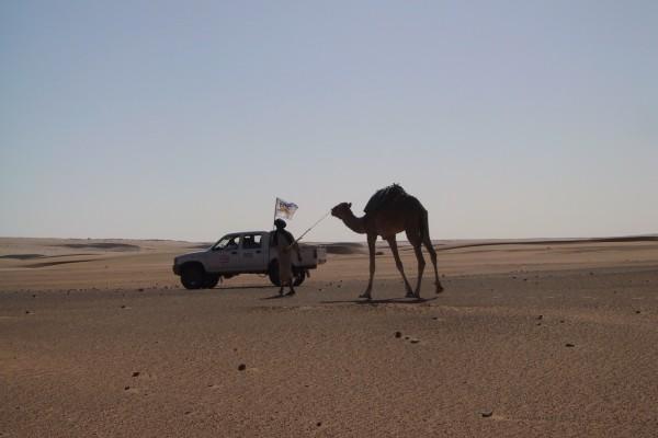 DocTrotter en Mauritanie: Transmauritanie