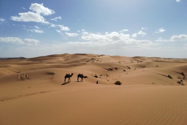 DocTrotter au Maroc : 33e Marathon des Sables 2018